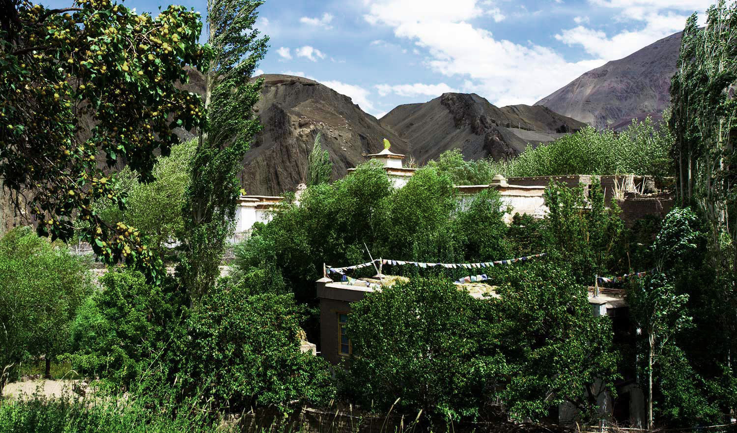 DAY 03: Leh – Uleytokpo (Sham Valley):